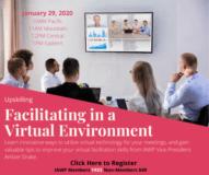 Facilitating in a Virtual Environment
